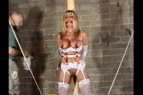 bdsm Sweet Submission