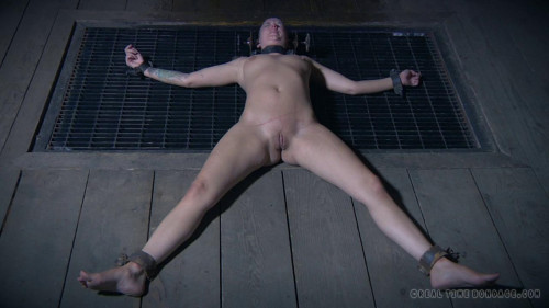 bdsm The Extended Feed of Miss Dupree, Part 3