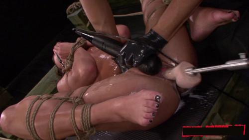 bdsm SexualDisgrace Videos, Part 2