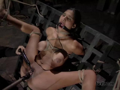 bdsm Sweetness Returns - Sweetness