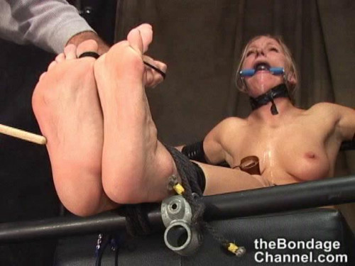 Bondage Stars 14 BDSM