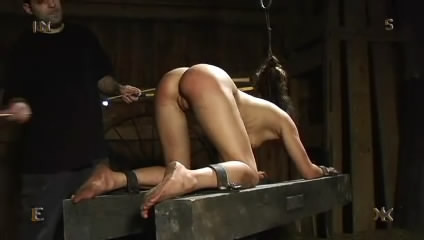 bdsm Doggy style to enjoy