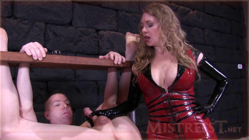 Femdom and Strapon Mistress T
