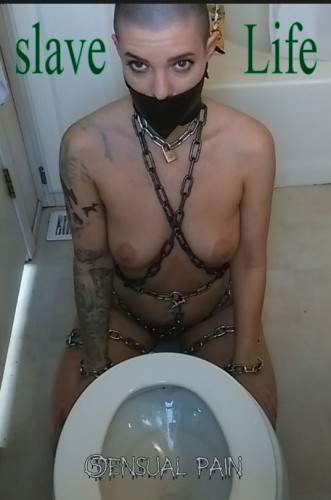 bdsm SensualPain - July 23, 2016 - Slave Life - Cleaning the Toilet - Abigail Dupree