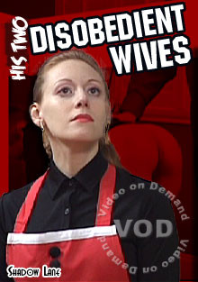 bdsm His Two Disobedient Wives