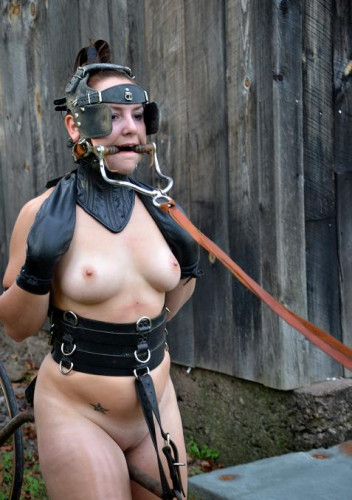 bdsm Pony in harness