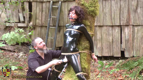 bdsm House of Gord - Tree Fucked