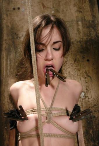 The true vocation BDSM