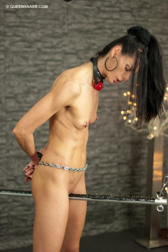 DOWNLOAD from FILESMONSTER:  Queensnake BDSM BDSM Extreme Torture  Electrider