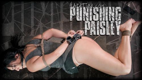 bdsm Punishing Paisley