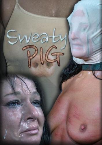 bdsm Sweaty Pig 1