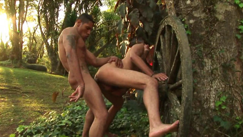 Wild gay sex picnic Gay Porn Clips
