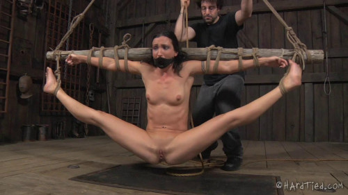 bdsm Barn Exercises