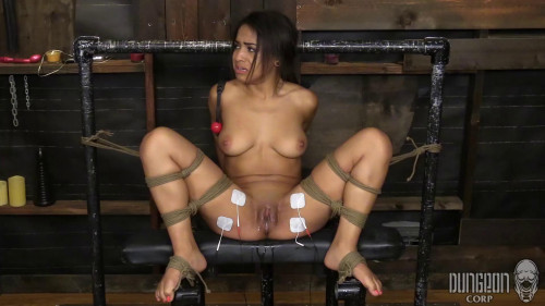 bdsm Nicole Bexley - Hot as Fuck, First Timer