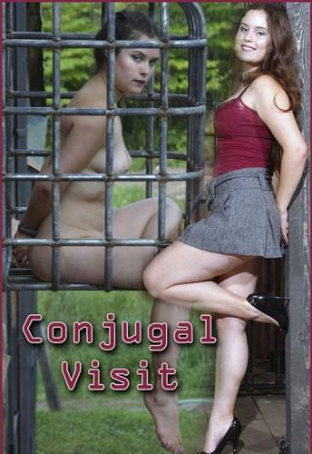 bdsm Conjugal Visit-Charlotte Vale