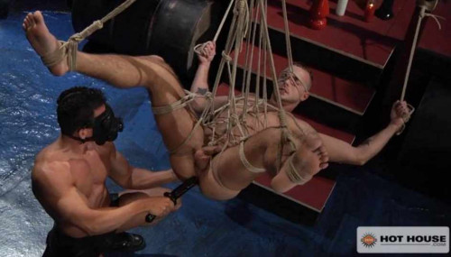 Gay BDSM Muscle-bound dicks