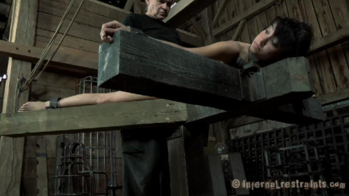 Boxed and Stocked 2 BDSM