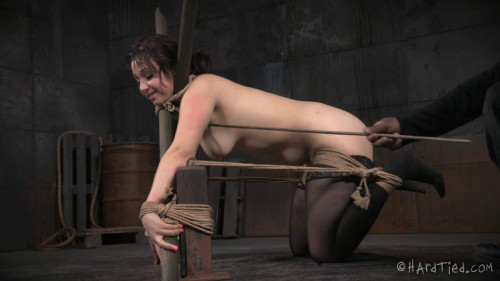 bdsm HardTied Piper Rage Breaking Bratty