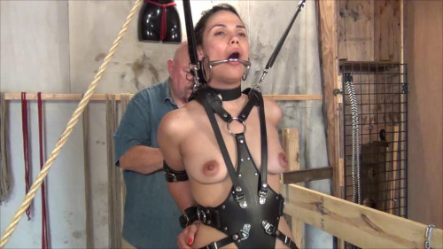 bdsm Zayda J Reluctant Pony Girl Part Two