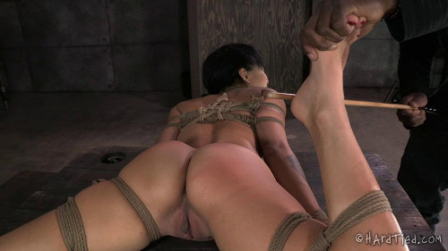 bdsm Mia Austin The New Girl Part One
