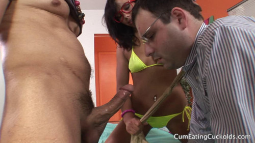 DOWNLOAD from FILESMONSTER:  Bisexual Porn Videos  Cuck Til Dawn