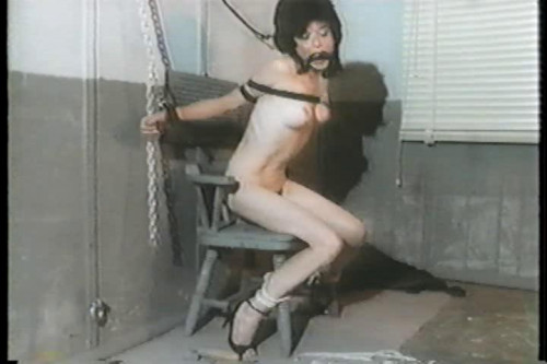bdsm Punished Vol. 1 part 2 - Georgia van Helsing