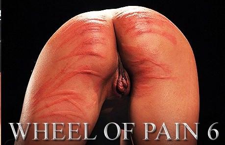 bdsm ElitePain  Wheel of Pain 6