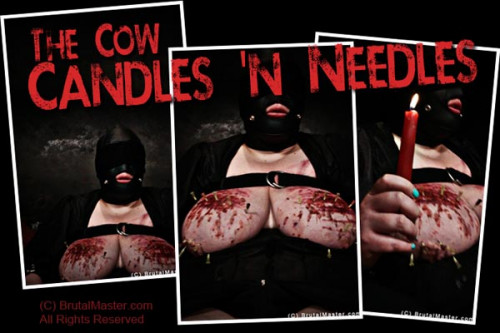 bdsm Cow - Candles And Needles