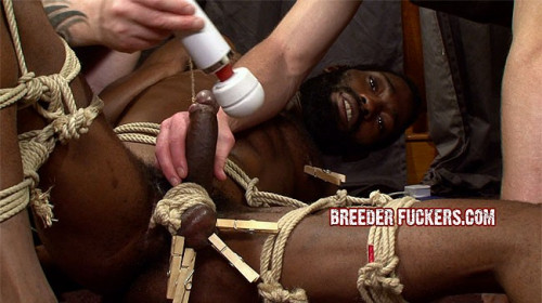 Gay BDSM BreederF - Joseph part 8