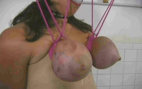 bdsm Extreme Tit Torment for Nikki