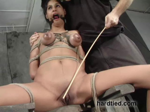 bdsm Sweet Bliss - Sweetness