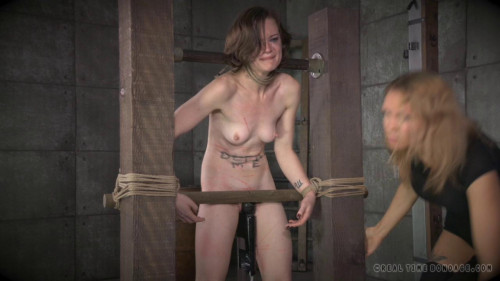 bdsm RealTimeBondage Birthday Wishes Damage Me