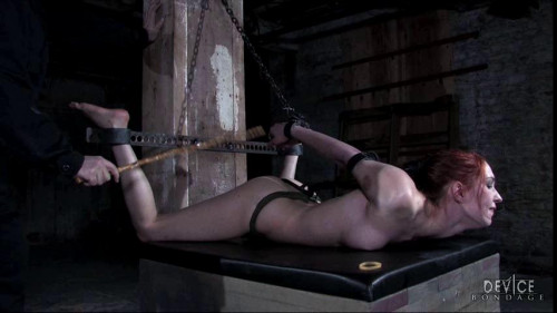 bdsm Calico Dainty Feet