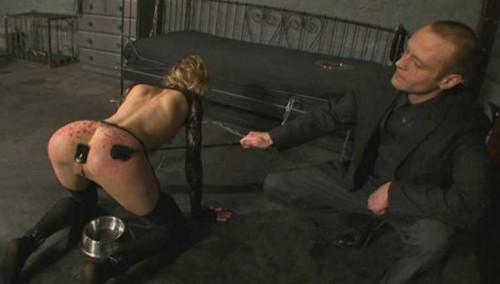 bdsm Harvested amazing slave