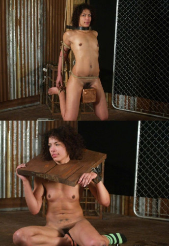 DOWNLOAD from FILESMONSTER:  IntoTheAttic BDSM BDSM Extreme Torture  IntoTheAttic   Tatianna Part 1 Posted Dec 22, 2011 HD