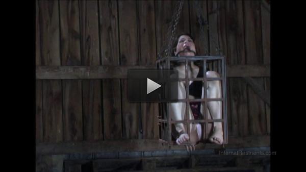 Felonie — Caged