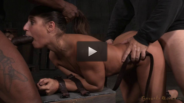 Abella Danger, Matt Williams and Jack Hammer