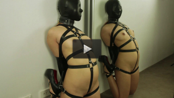 Leather Harness + Black Hood & Armbinder