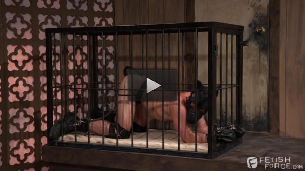 Mike DeMarco & Dallas Steele Scene 02