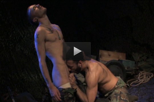 Pounded Down (stallion studios, muscle, anal sex)