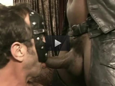 ass fucking ass fuck hunks - (Slave To My Hole)