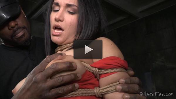 Caged Bird — Gabriella Paltrova, Jack Hammer — BDSM, Humiliation, Torture