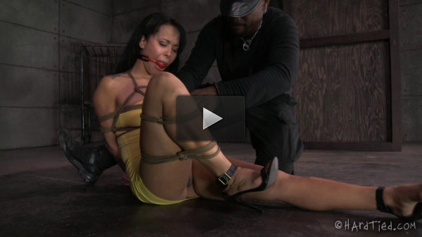 The New Girl Part 1 Mia Austin — BDSM, Humiliation, Torture