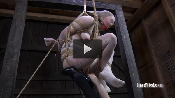 Caught in the Web Part Two — Star , Claire Adams