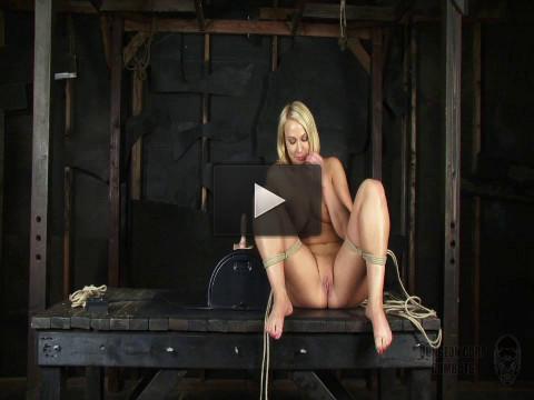 Sybian Slave (2013)