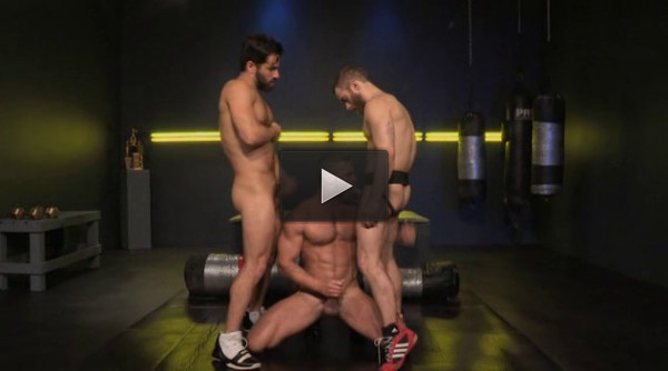 Cock Fight - stallion studios, big dick, monster.