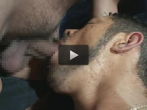 gay blog clips gay cock free - (Male Vaginal Intercourse)
