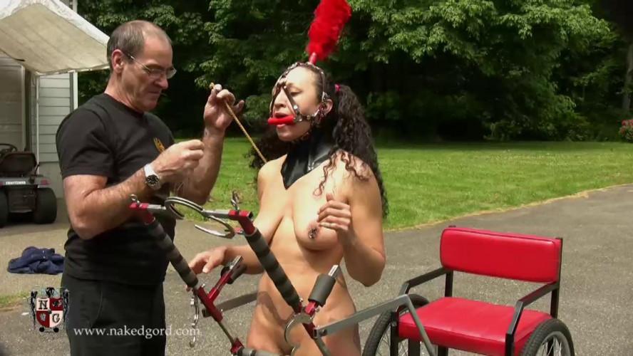 BDSM House Of Gord pack 2
