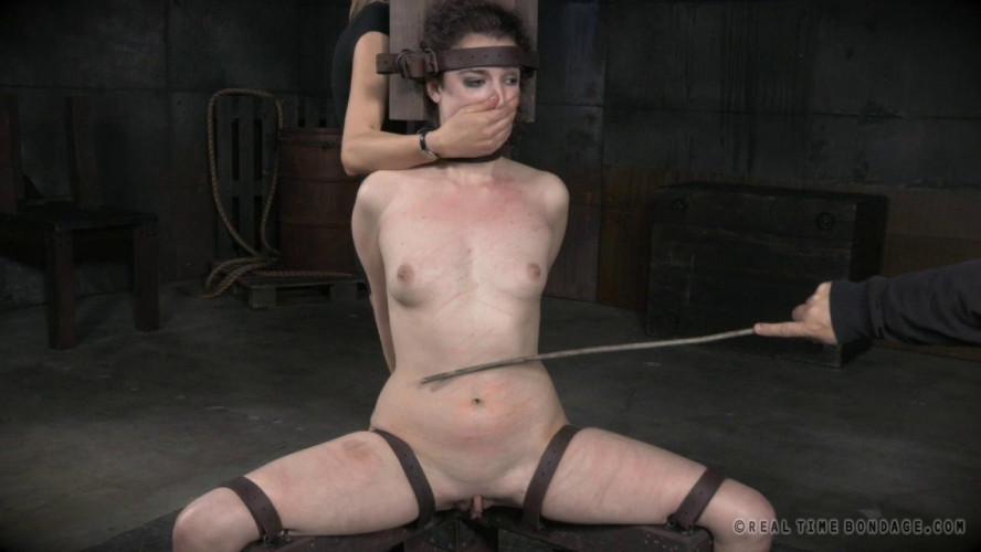BDSM Endza