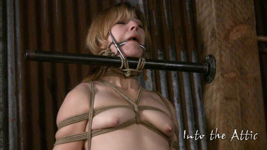 BDSM Intotheattic - Ginger